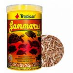 TROPİCAL GAMMARUS 500 ML